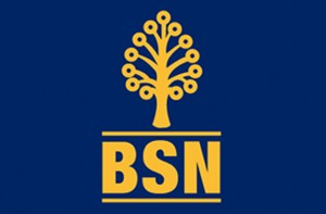 bsn personal loan
